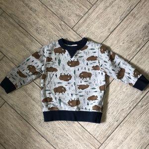 Gymboree printed sweatshirt